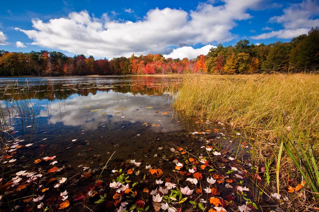 An Autumn Blanket