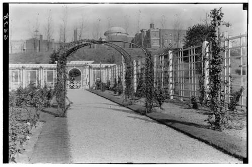 Rose Garden 1928