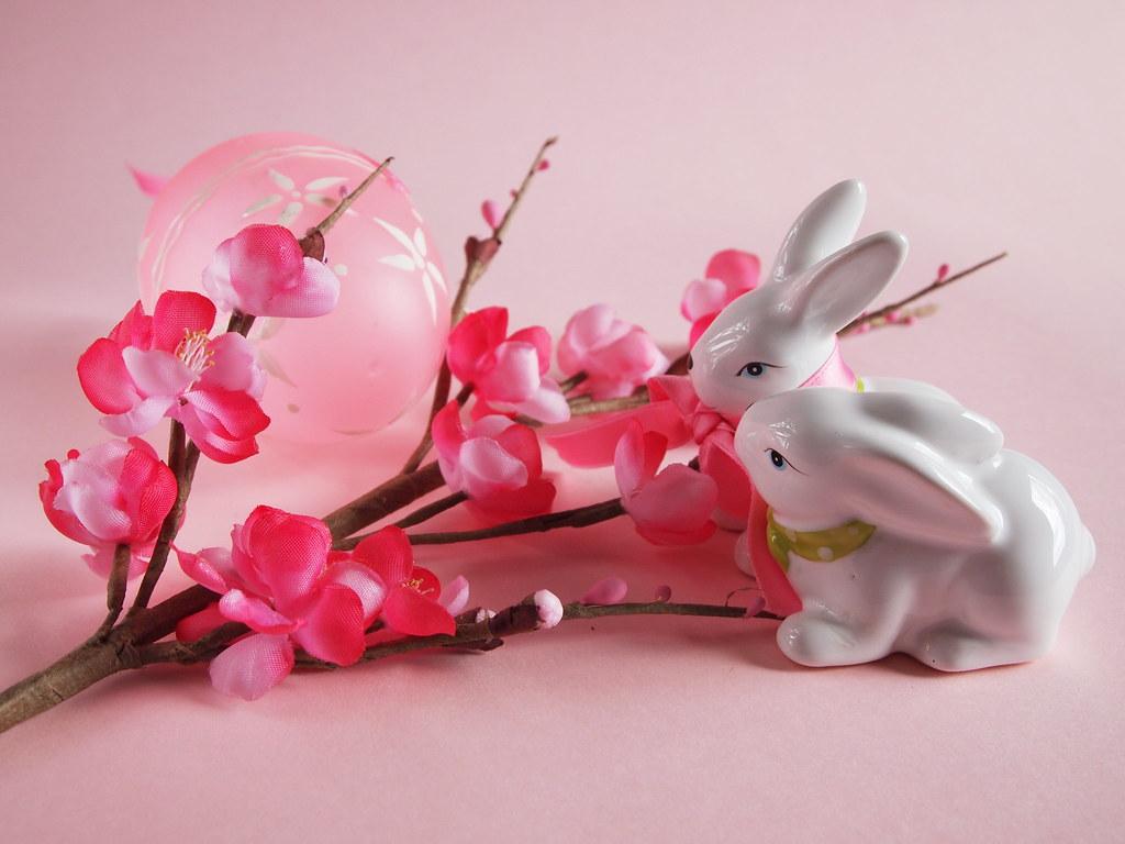Happy pink Easter! - Buona Pasqua rosa!