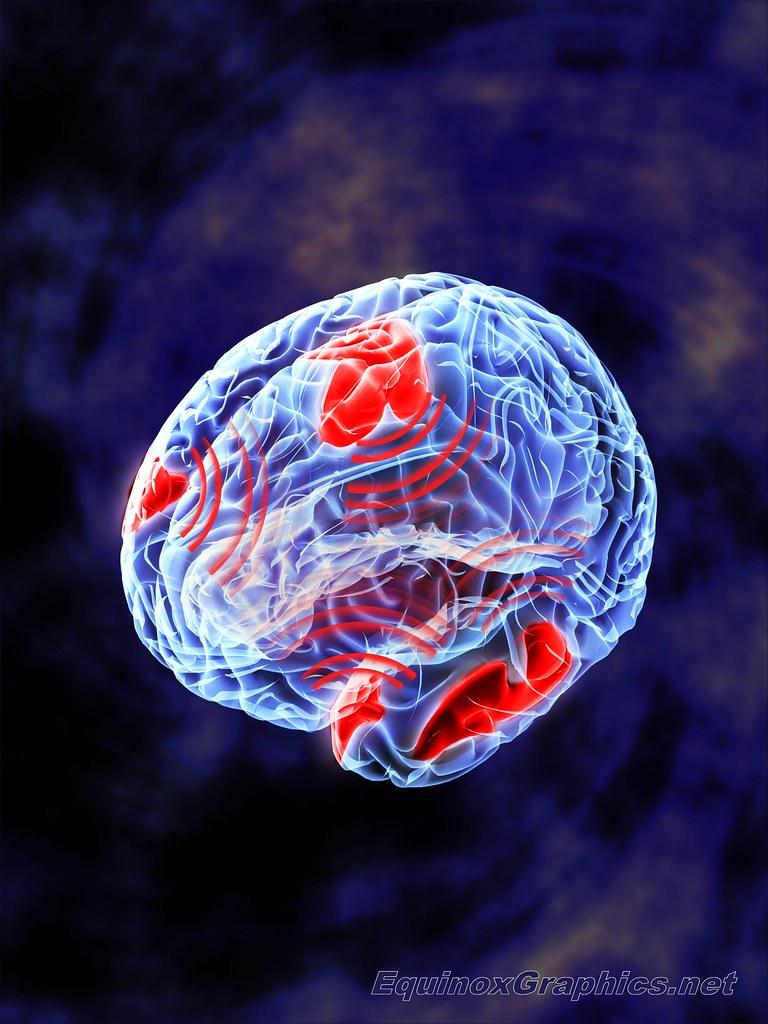 Image:Neural Synchrony