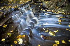 140: High Park Waterfall