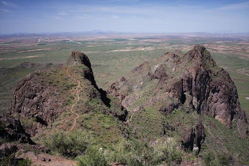 arizona season spring desert tucson hiking peak az bloom wildflower picacho 2010