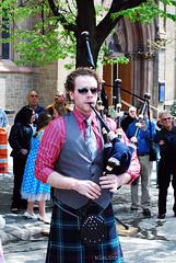 State Street Scrub TulipFest 2011 Albany NY