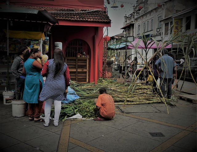 the one in Little India