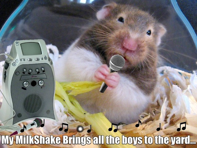 And for next karaoke song Me will sing a classic.....