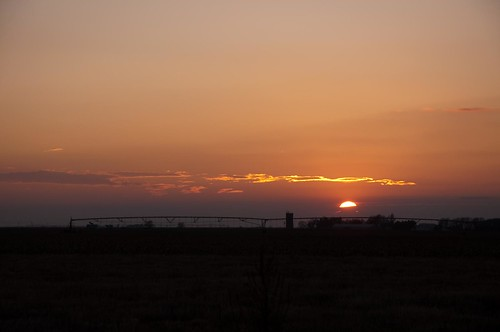 sunset nikon pheasant farming hunting kansas copeland d90 sublette