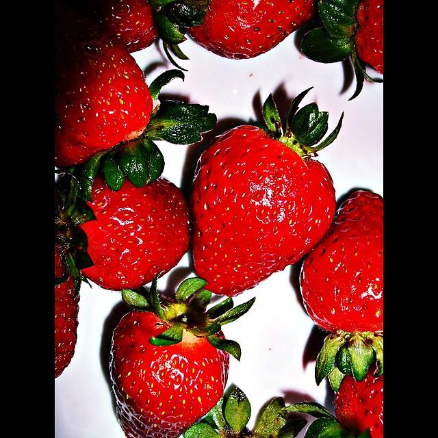 strawberry fields forever, Fujifilm A860