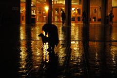Rosie and Julie, rainy brick, winter colors, Undergrad Library, Red Square, University of Washington, Seattle, Washington, USA