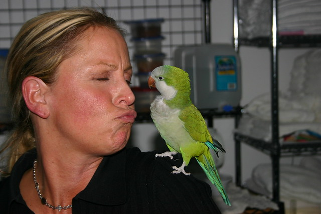 Scooter loves kisses. Especially from ladies