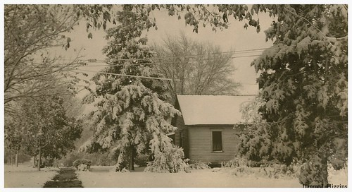 Winter Snow Fall.  Galva, Illinois.    SCAN5448