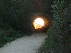Trail Tunnel under PCH JPB SP