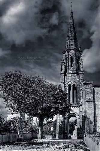 Les marronniers de l'église [v2]