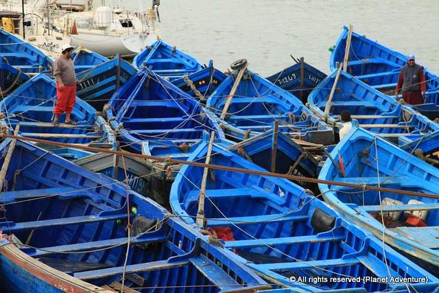 Fishing Boats - Essaouira - Morocco