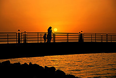 Sunset ( Silhouettes )