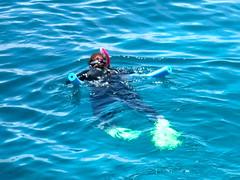Go Snorkelling In Shoalwater Marine Park