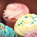 oh cupcake
