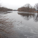 Charles River, 10 February 2010: Grey skies and vanishing ice
