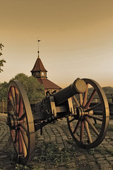 The Cannon
