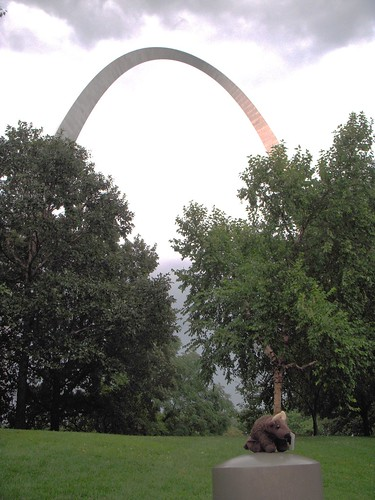 Buddy at the Gateway to the West in Saint Louis MO