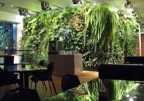 indoor vertical garden Flickr Photo Sharing