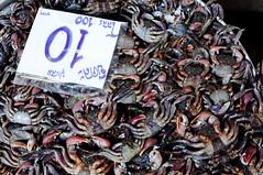 Crab on sale