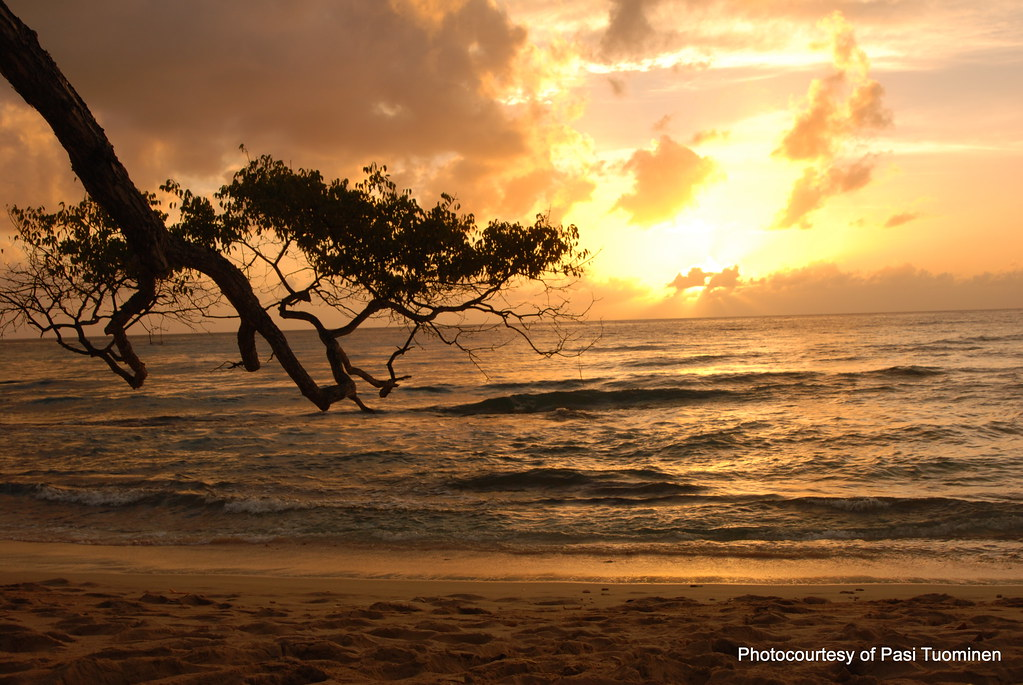 Heywoods Beach фото