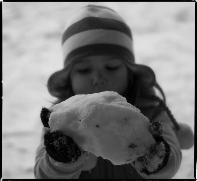 Snehova Koule
