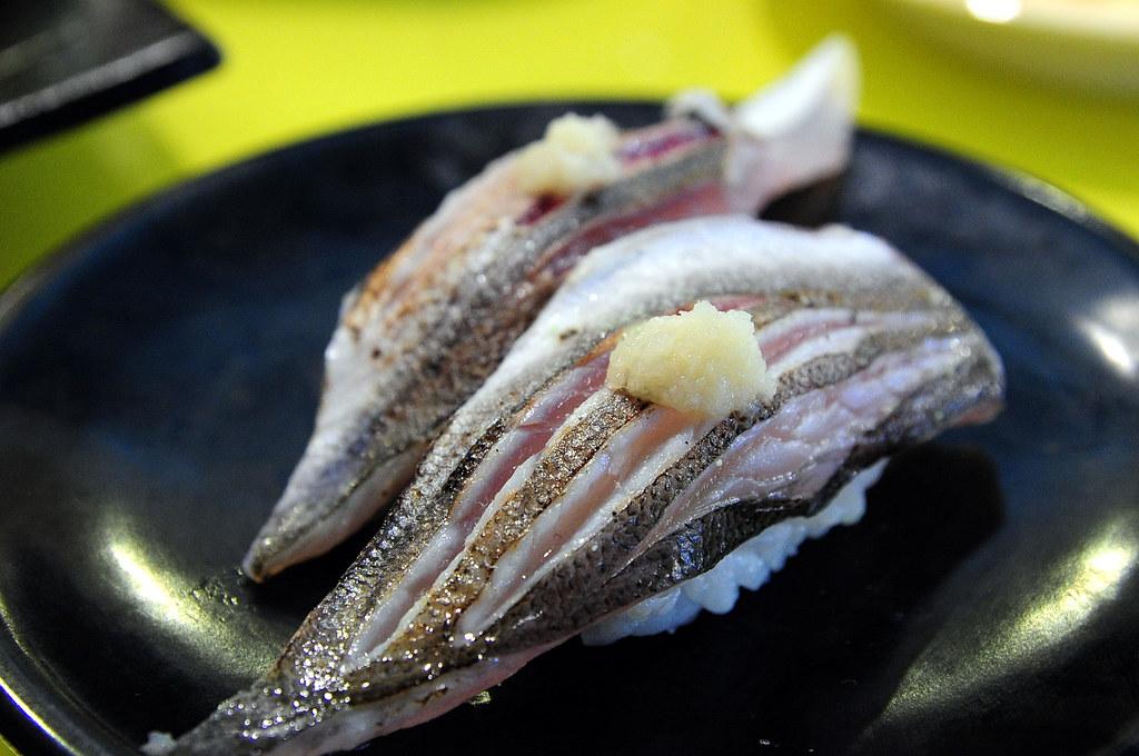 小高玉-尖梭魚