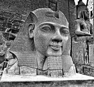 Granite Head of Ramesses II - Luxor