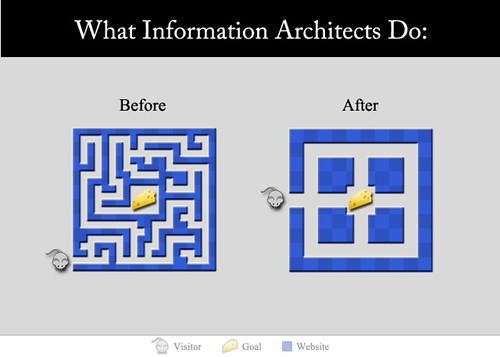 Explain Information Architecture (Graphic)