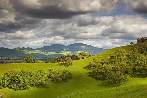 california sky tree canon landscape oak lafayette cumulus 5d diablo walnutcreek pleasanthill mkii 5dmkii contraconsta