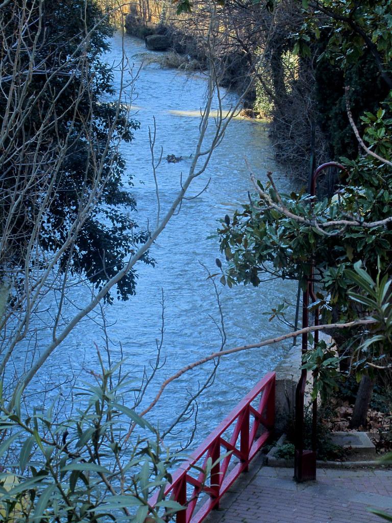 Desde este rincón del río