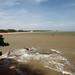 Iema - Área de proteção ambiental de Praia Mole