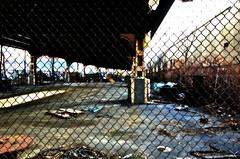 collin erickson 83 - 22 Hunters Point, Queens