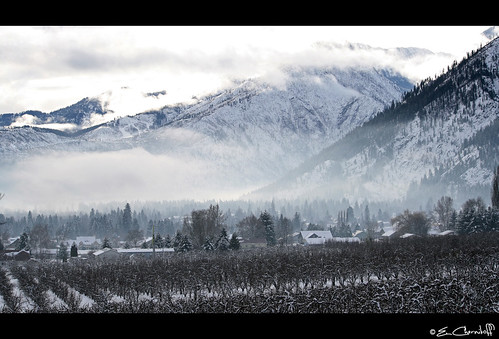 county trees winter plants usa snow ski mountains cold ice weather fog architecture canon lens landscape bavaria rebel frozen washington northwest farm hill plantation pear icicle fields wa wenatchee xs chelan cascade leavenworth okanogan mocktudor tudorbethan 1000d