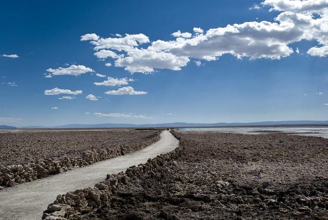 el camino por el desierto