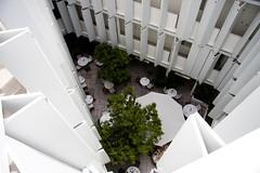 Condesa DF Atrium Down