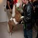 Steve dances with the pony