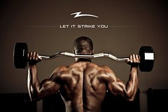 arm, bodypump, weight training, muscle, barbell, bodybuilder, overhead press, physical fitness, bodybuilding,