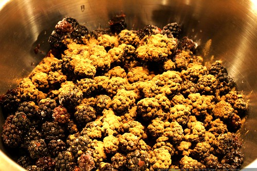 blackberries and cinnamon destined to become cobbler