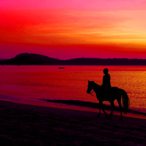 trip travel sunset red sea sky horse orange holiday beach water beautiful silhouette sunrise canon thailand eos evening day riding 5d phuket markii crepuscolo 500x500 crepuscolosunsetssunrisesnights jannapham
