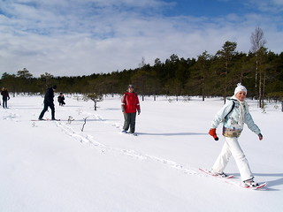 Snowshoeing in Soomaa national park in Estonia