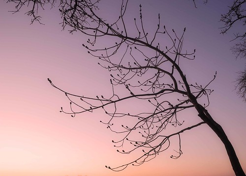 park texas view denison eisenhowerstatepark edeevo edeevophotography