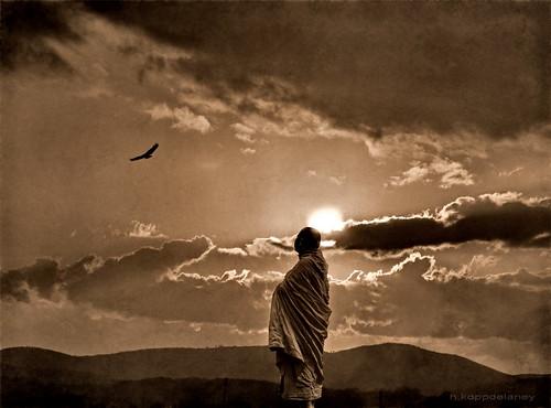 Buddha's Eagle