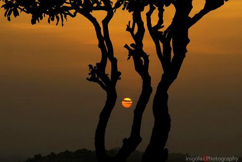 HAMPI/1001 sunsets