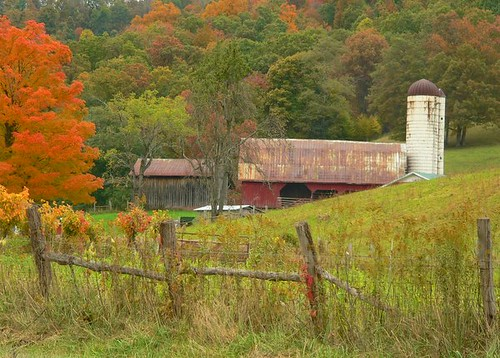 Early Fall On The Farm
