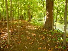 Patriots Path Between Frelinghuysen Arboretum and Acorn Hall