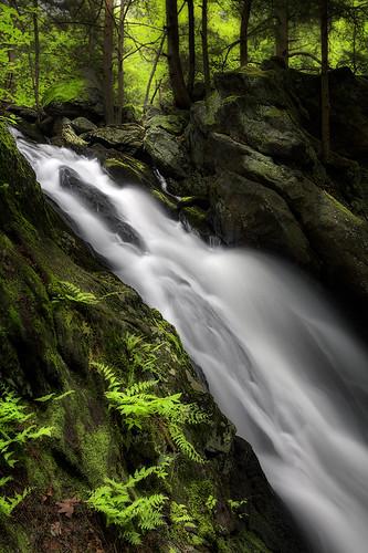 water woods falls buttermilk terryville