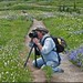 Getting Low For That Mt Rainier Wildflower Shot by masterofmadness