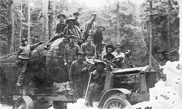 Spruce Soldiers on a Logging Truck